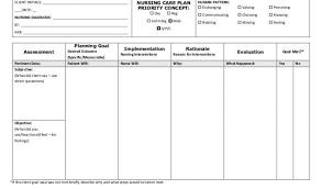 Veterinary Home Care Plan Template Blank Nursing Care Plan Templates