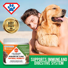 Glucosamine For Dogs Dosage And Top Rated Supplements