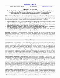 Sample Resume For Sales Marketing Manager In A Hotel Save