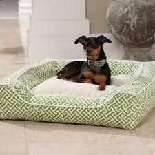 dfs designer pet collection square beddog beds at drsfostersmithcom