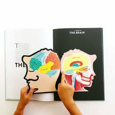 a cutaway look inside the human has cutouts that let your kids look inside each system of the the book breaks down the inner workings of organs