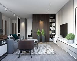 Modern Light Wood Furniture Spacious Looking One Bedroom Apartment With Dark Wood Accents