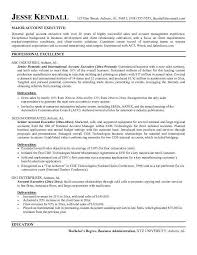 Resume Form Epic Resume Format For Accounts Executive Best Sample