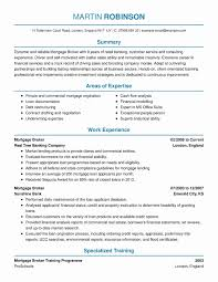 038 Real Estate Business Plan Template Ideas 20holding