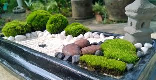 Modest Mini Zen Garden Designs Gallery Part 82