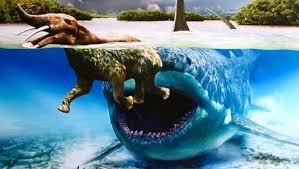 real megalodon shark sightings pictures. Perfect Sightings Real Megalodon Shark Sightings Biggest Sharks Of All Time Megalodons Are  Worldu0027s Largest Sharks Ever These Giant Sea Monsters Didnu0027t Go Extinct Intended Sightings Pictures A