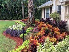 Small Picture Florida landscaping Northern inspired Landscape Design for Tampa