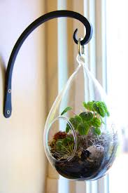 picture of how to make a terrarium