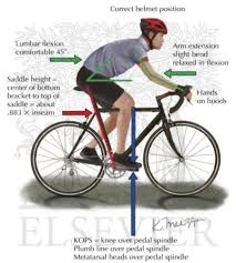Bicycle Bicycle Fitting Guide