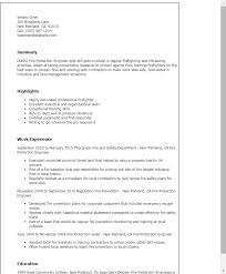 Fire Safety Engineer Sample Resume 10 Useful Materials For Process 7 ...