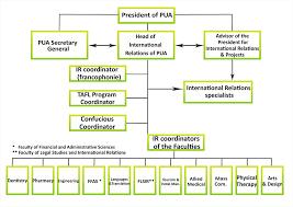 Organizational Chart Pharos University In Alexandria