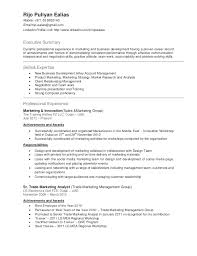 resume format for cabin crew best executive resume format