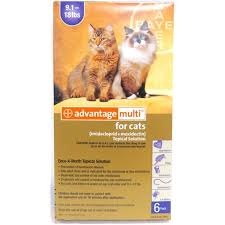 Advantage Dosage Chart For Cats Advantage Multi For Cats 9 1 18 Lbs 6 Month Supply