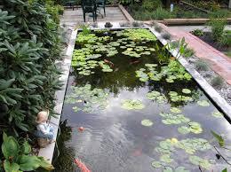 Pond Design Garden Ponds Big Koi Fish Pond Design Ideas Garden Pinterest