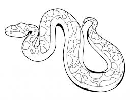 Small Picture Snakes Coloring Pages Seasonal Colouring Pages 8650