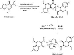 nalidixic acid the antibacterial