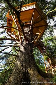 tree house plans for one tree. This Orgeon Treehouse Is An Example Of Single-tree Design. Tree House Plans For One H