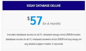 essay database premium mind over legal matter
