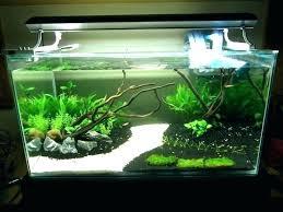 small aquarium decoration ideas at home diy decorating engaging