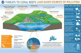 How To Make Chart On Pollution How Does Pollution Threaten Coral Reefs