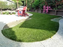 Grass Installation Charco Arizona Cat Grass Backyard Garden Ideas