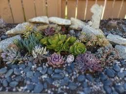 rock garden small image of you indoor ideas r32 garden