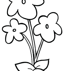 Cool Flower Coloring Pages Complex Coloring Page Download These Free