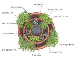 Download Plants For Gardens Ideas  Solidaria GardenContainer Garden Plans Pictures