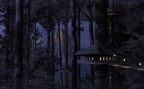 dark forest wallpaper 1920x1080. Plain 1920x1080 On Dark Forest Wallpaper 1920x1080 R