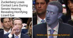 Image result for mark zuckerberg memes