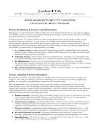 Executive Summary Example For Resume Senior Management.