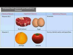 Vitamins And Minerals Sources And Functions Chart Vitamins Their Sources And Deficiency Diseases Youtube