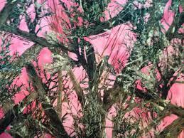 Best 42+ Mossy Oak iPhone Background on ...