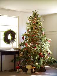 Image Farmhouse Fascinating Schemes Of Traditional Christmas Tree Decorating Ideas Showing Green Pine Tree Having Small Lighting And Livinterior Fascinating Schemes Of Traditional Christmas Tree Decorating Ideas