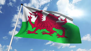 Image result for welsh flag flying