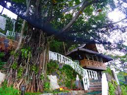 Hanging Tree House Tree House Resort Genuine Home Design