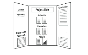 Science Project Layout Science Fair Board Layout For