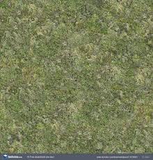 wild grass texture. Grass0110 - Free Background Texture Grass Short Ground Green Seamless Seamless-x Seamless-y Wild