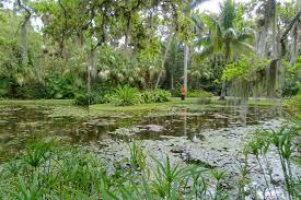 file pond mckee botanical garden vero beach florida dsc02980 jpg