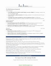 Marketing Resume Formats Simple Resume Format For Experienced Marketing Professionals Resume 13