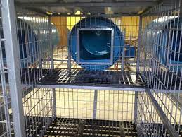 above ground dog kennel dog kennel