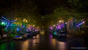 long row of trees with led lights art installation by sensebellum at upstream festival seattle