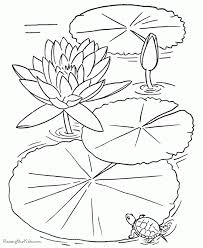 Small Picture Free Printable Flower Coloring Pages Photos Coloring Free