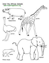 Small Picture African Animals Coloring Pages Savanna African Animals