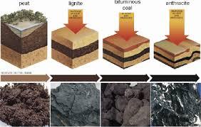 Several Types Of Coal Coal 2010 Download Scientific