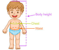 Swimsuit Body Type Chart Baby Toddler Swimwear Size Chart