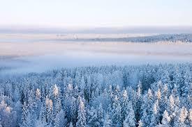 Skriv in ett namn, välj datum eller bara tryck på sök. Winter In Ostersund Sweden High Quality Wall Murals With Free Delivery Photowall