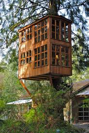 Modern Tree Houses 34 Best Tree House Images On Pinterest Treehouses Architecture