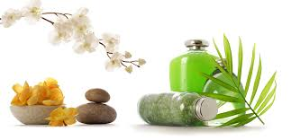 spa png. body to massage in bangalore by imperial spa   pulse linkedin png e