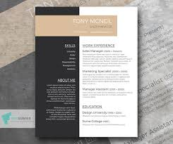 Free Professional Resume Sample Smart Jobseeker Freesumes Cool Professional Resume Design